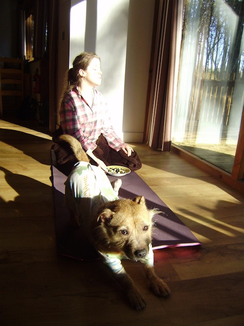 grace on yoga mat in sunshine with Bertie dog