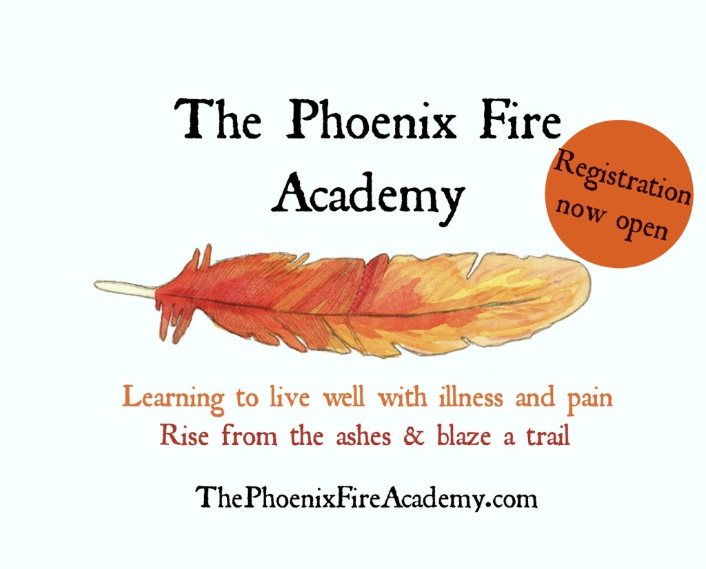 The Phoenix Fire Academy