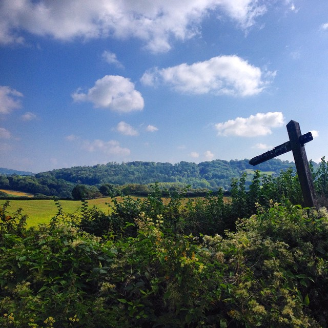Pause for a good view #Wales travelling to #forestofdean #latergram #footpath #igerswales #wwoa #roadtrip #lastdayssummer