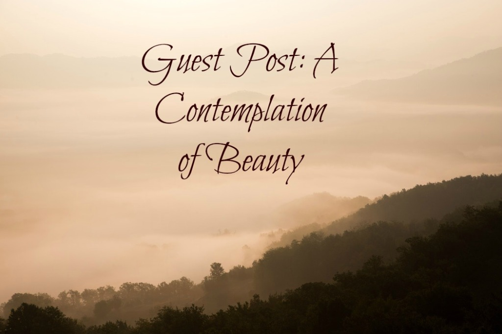 Guest Post: A Contemplation of Beauty