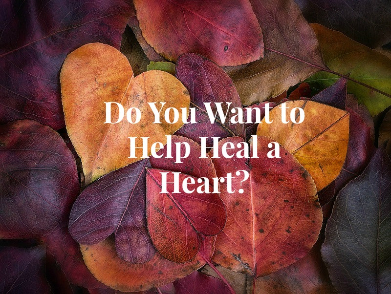 Do You Want to Help Heal a Heart?