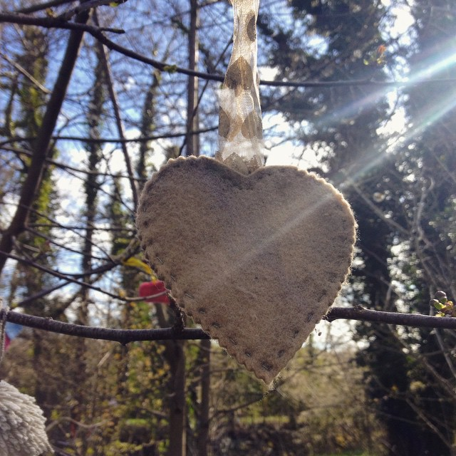 Hearts hanging from the branches on our #weekendadventure #wales #woodland #hearts #wheelchairride #igerswales #trailblazingwellness #honour