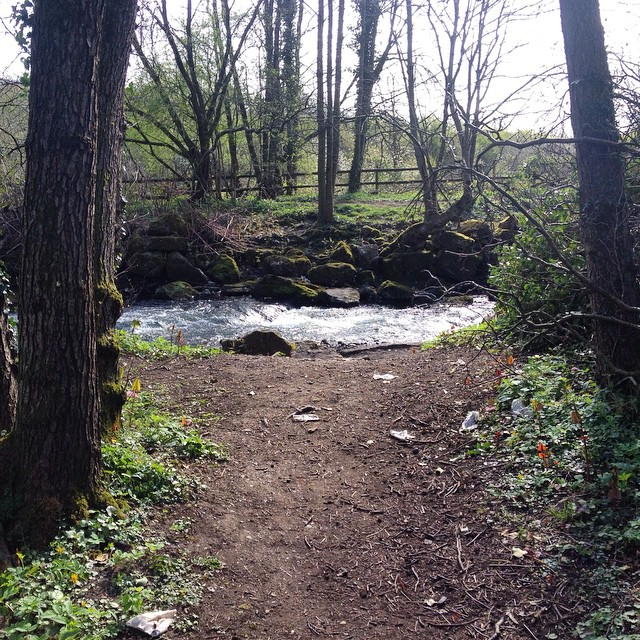 Wide path, wild water. Where are your steps landing today? What do you need to step, balancing mindful care with adventure & resilience? #healingjourney #trailblazingwellness #wales #adventure #latergram #igerswales
