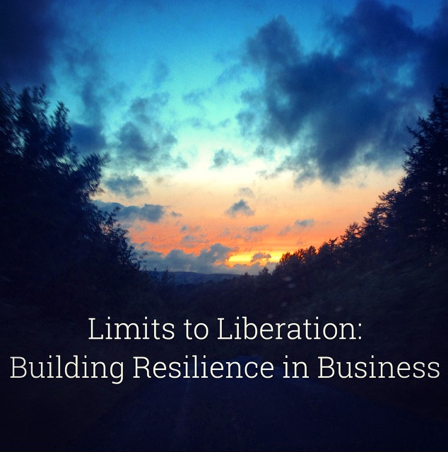 Limits to liberation: building resilience in business on background of sunset and forest