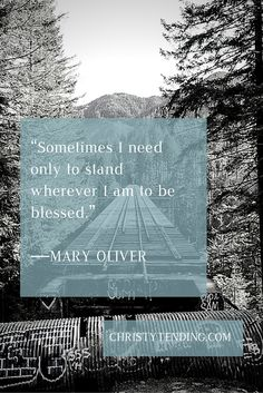 Black and white photo of trees and railway with blue overlay, white text Mary Oliver Quote. Sometimes I need only stand wherever I am to be blessed
