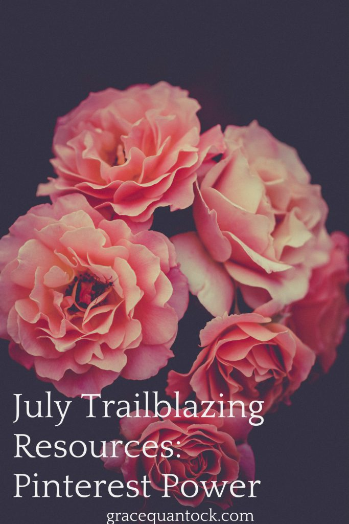 July Trailblazing Resources Pinterest Power white text on black background with frilly pink roses in photo