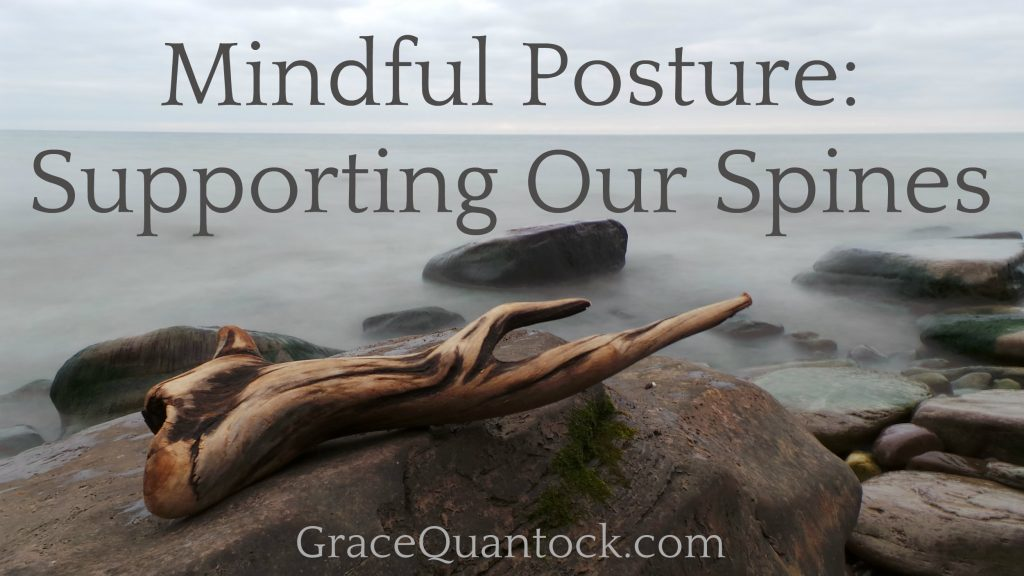 mindful posture, supporting our spines grey text on photo of a sea and driftwood on a rock