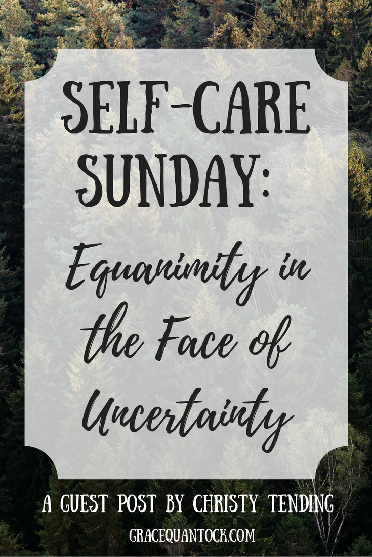 self care sunday: equanimity in the face of uncertainty