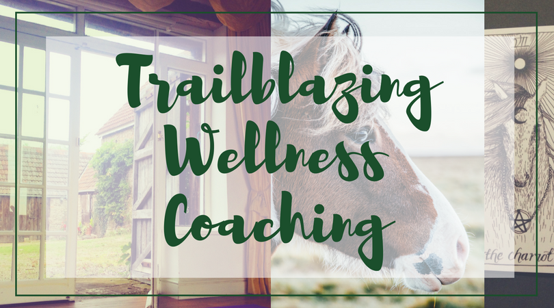 Trailblazing Wellness Coaching text over images: a room with a yellow curtain looking to a stableyard, a horse photographed from the side, a tarot card of the wild unknown the chariot pictures a line drawing of a horse