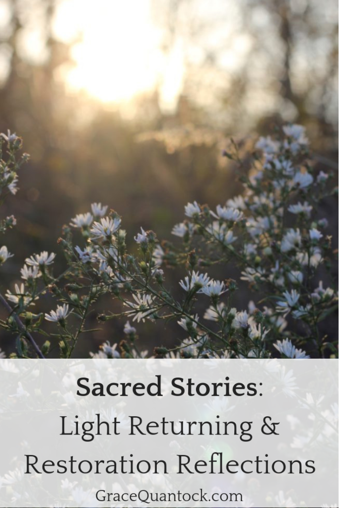 White flowers in a wood, with sun shining on them. Text: Sacred Stories: Light Returning & Restoration Reflections.