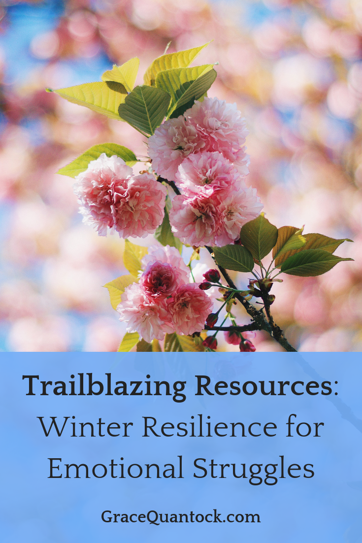 Trailblazing Resources - text over picture of cherry blossom pink on the tree