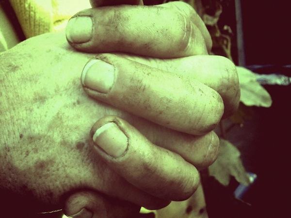 Jules Hands